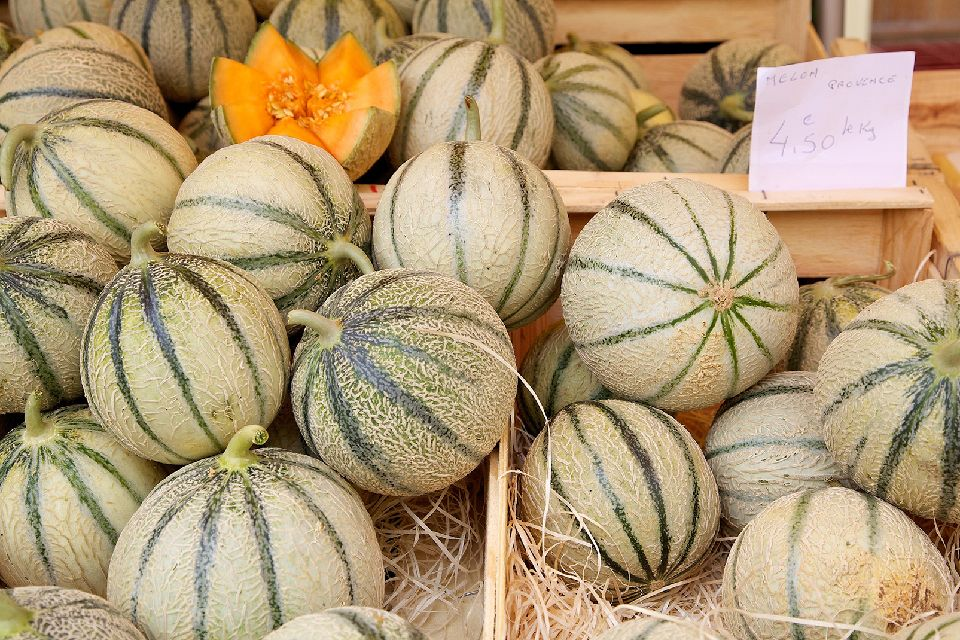 Le melon de Cavaillon , A déguster sans modération , France