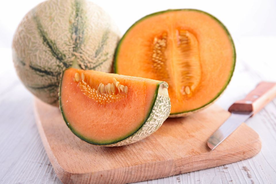 Le melon de Cavaillon , La star de l'été , France