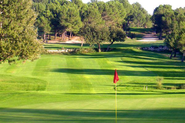 Los olivos del campo, Golf de Baux-de-Provence, Los deportes, Provence-Alpes-Côte d'Azur