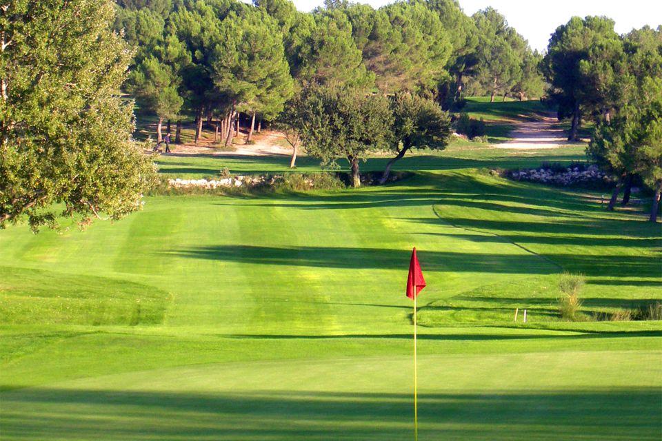 The estate's olive trees, Baux-de-Provence Golf Course, Sports and activties, Provence-Alpes-Côte d'Azur