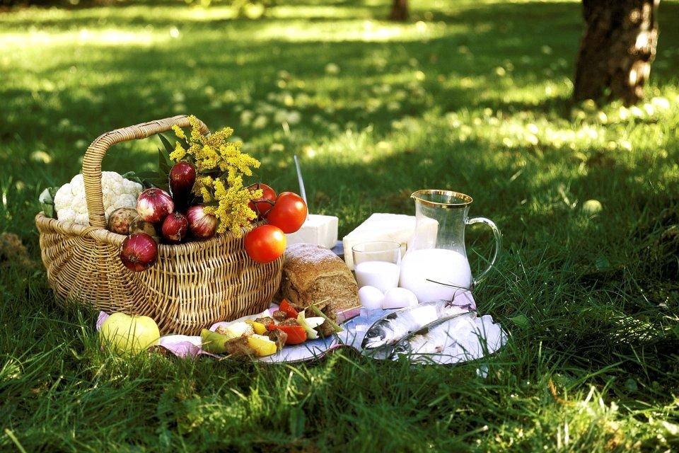 La gastronomie, viande, poisson, alimentation, agriculture, pays de la loire, france, europe, pique-nique, lait