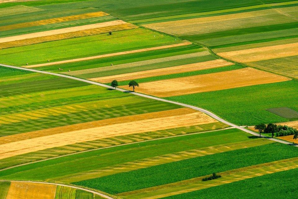 Pays-de-la-Loire , Les champs des Pays de la Loire , France