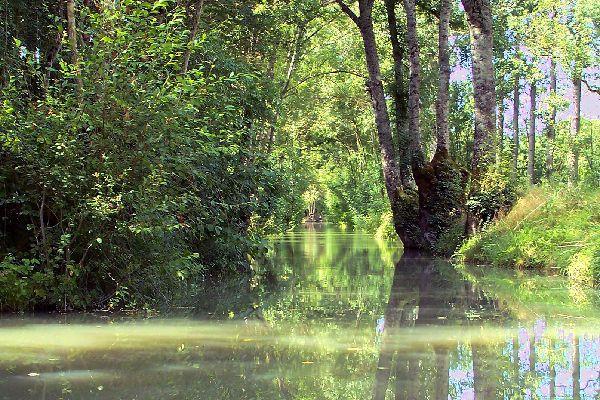 Marais Poitevin (Gulf of Poitou marsh) , The Poitevin Marsh , France