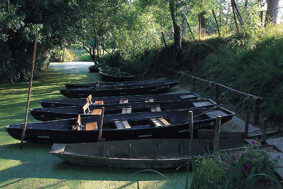 Marais Poitevin (Gulf of Poitou marsh) , A boat excursion , France