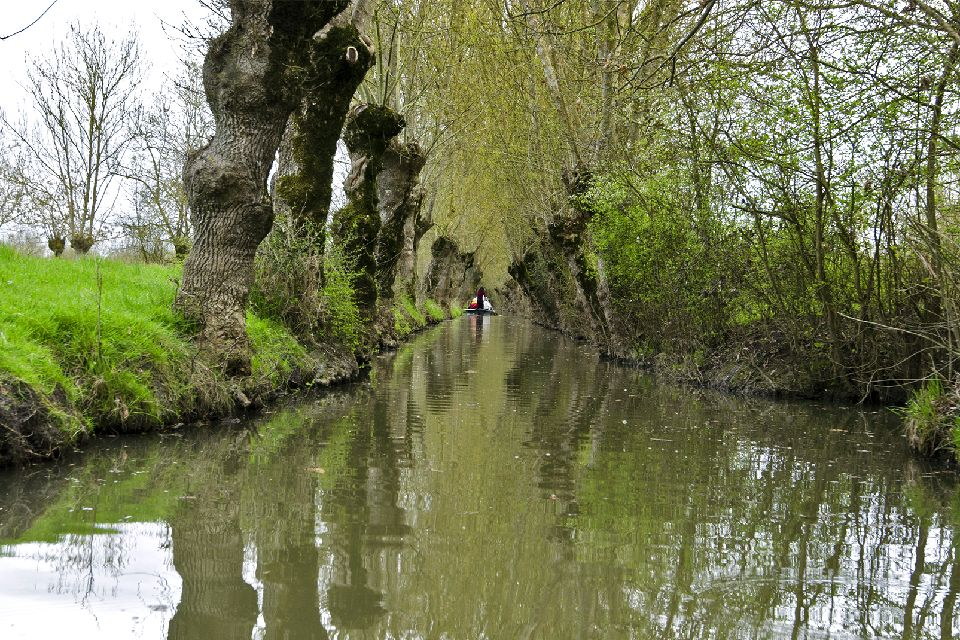 Marais Poitevin (Gulf of Poitou marsh) , The role of the marsh , France