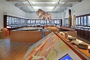 Le Muséum d'Histoire Naturelle de Nantes , France