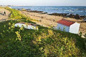 Les côtes ligériennes , L'île d'Yeu, un environnement protégé , France