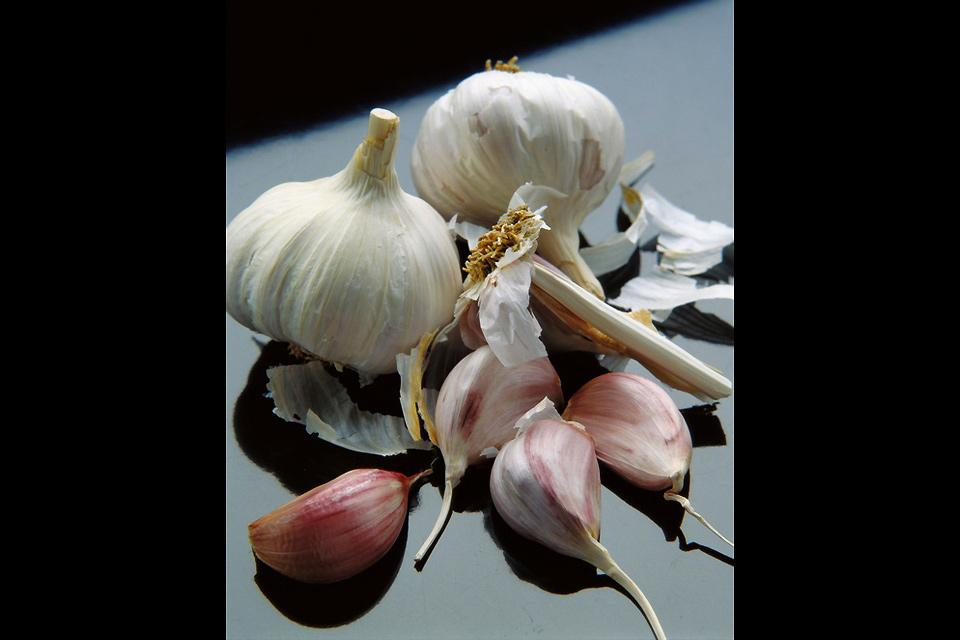 El ajo del norte , Dientes de ajo rosado , Francia