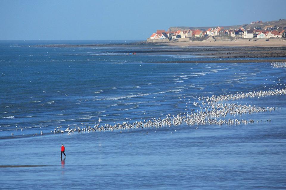 La costa de Ópalo , Francia