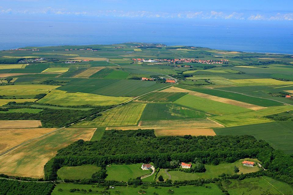 Le cap Gris-Nez , Les cultures sur le cap Gris Nez , France