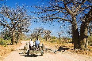 Les Vendas , Afrique du Sud