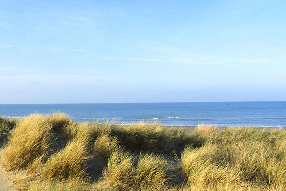 Las dunas flamencas , Francia