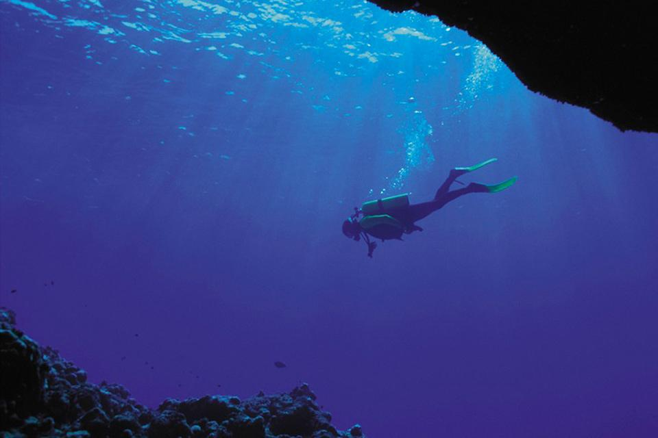 Diving off the Cerbicale Islands , France