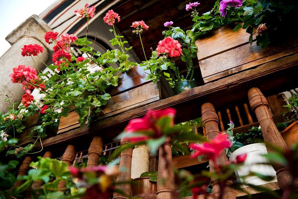 Die Flora , Blumen vor den Häusern , Bulgarien