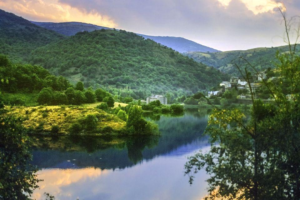 Une région entre montagnes et forêts , La flore du Languedoc-Roussillon , France