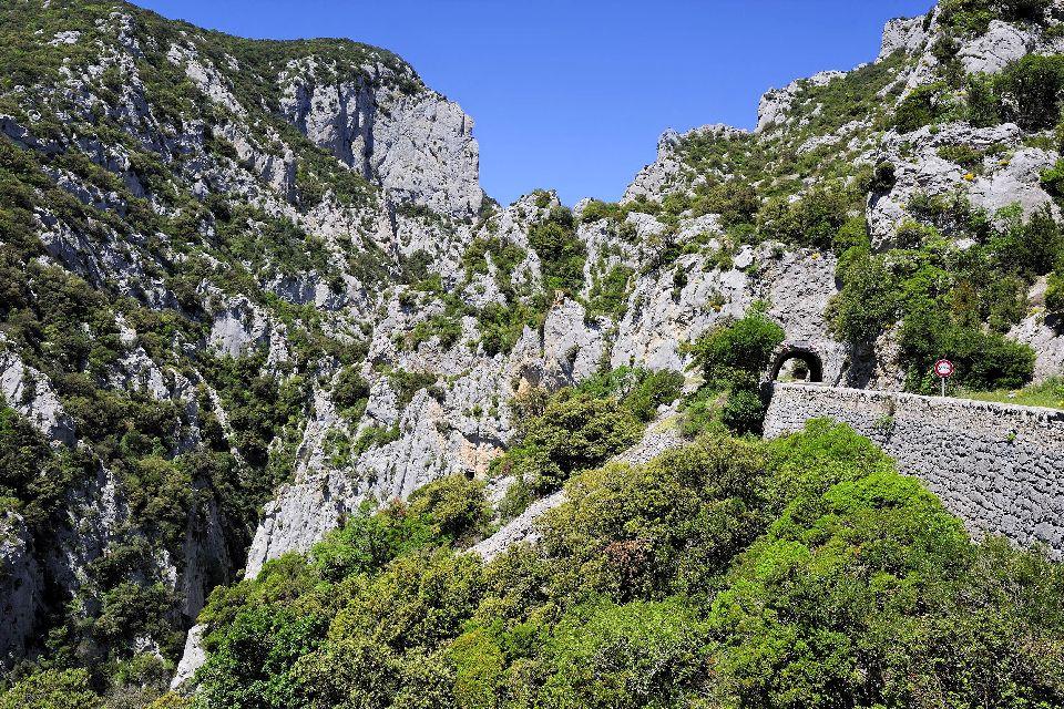 Une région entre montagnes et forêts , France