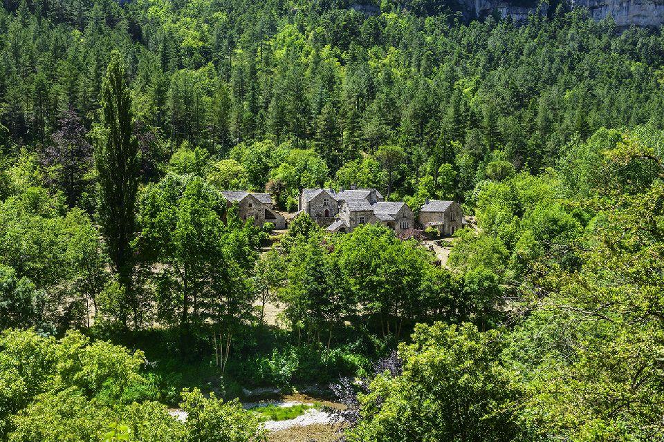 Le Parc National des Cévennes , Activités au Parc national des Cévennes , France