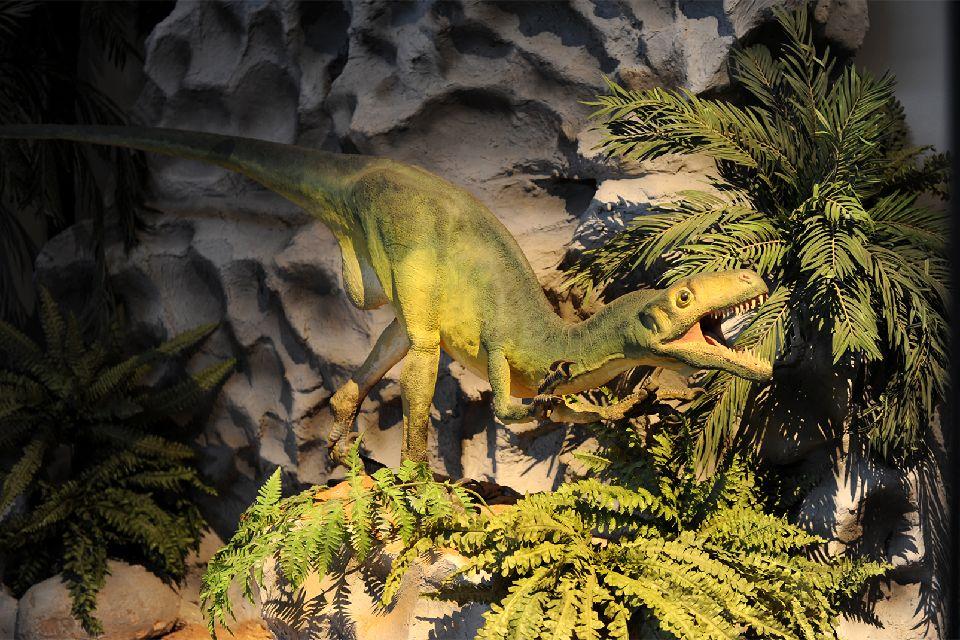 Museo de los dinosaurios de Esperaza , Francia