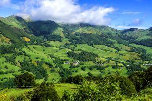 Cantal , Cantal, un mar de vegetación , Francia