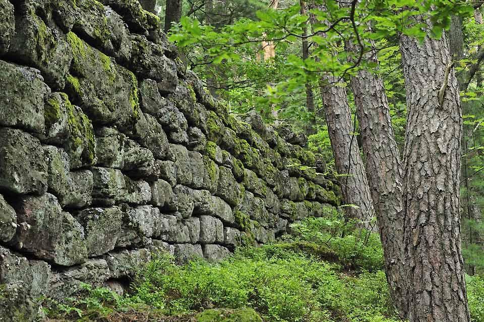Le Mur Païen , Un site mystérieux en Alsace , France