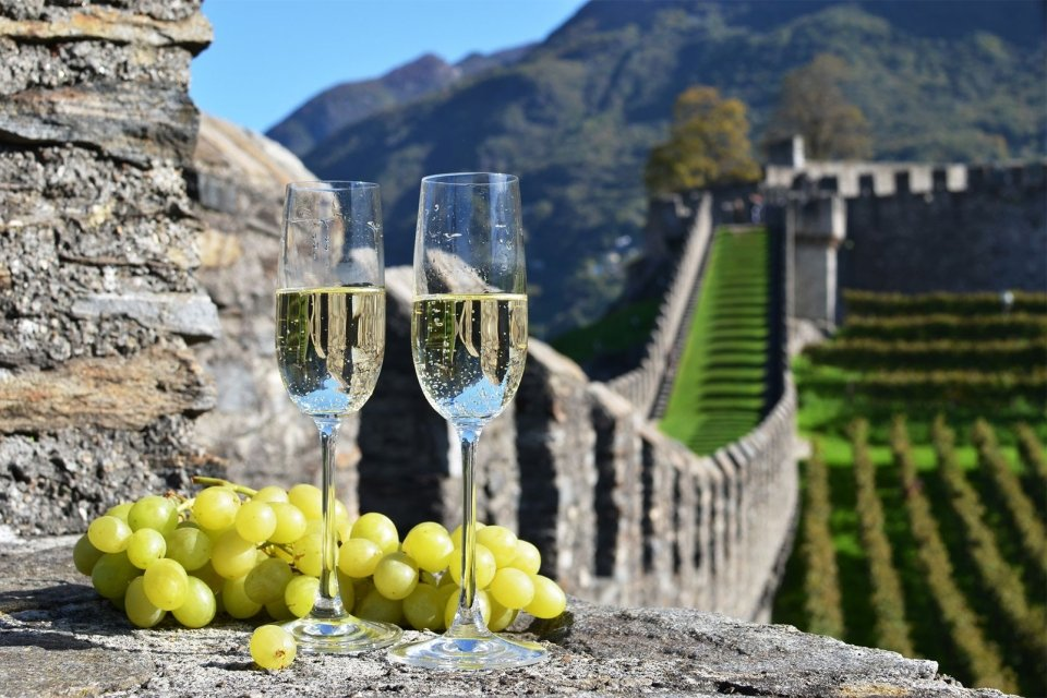 La gastronomie, vigne, vin, agriculture, franve, picardie, europe, château