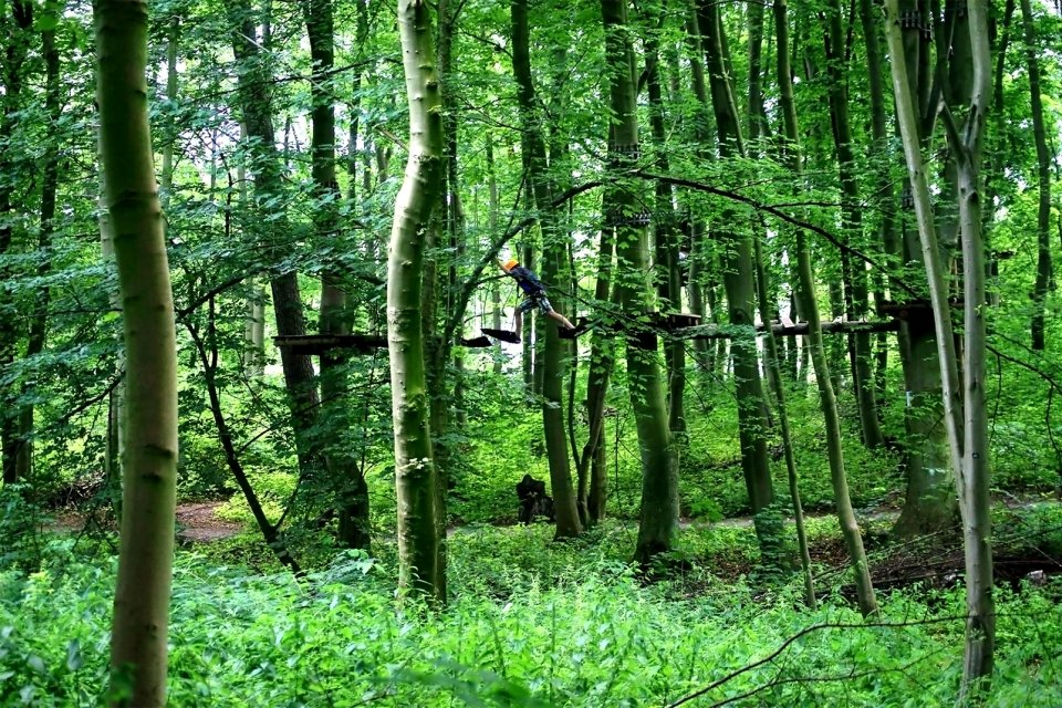 , Arbre et Aventure, Activities and leisure, Picardy