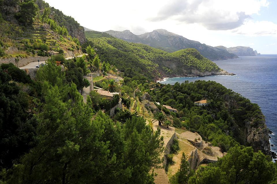 The sierra de Tramuntana , Nature in the Sierra de Tramuntana , Spain