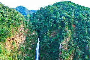 Las montañas: Cardamomos, Elefantes... , Camboya