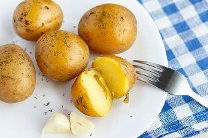 Ile de Ré potatoes , France