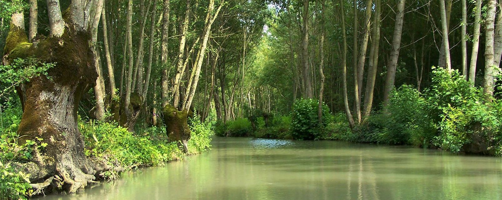 Marais Poitevin National Park , France