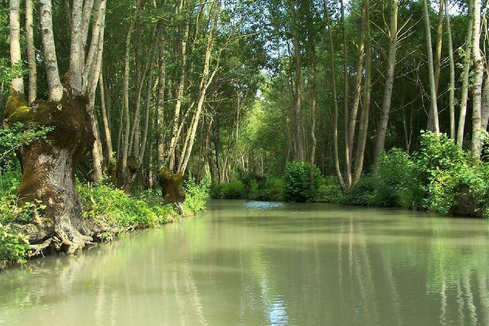 Parc naturel régional du Marais Poitevin , France