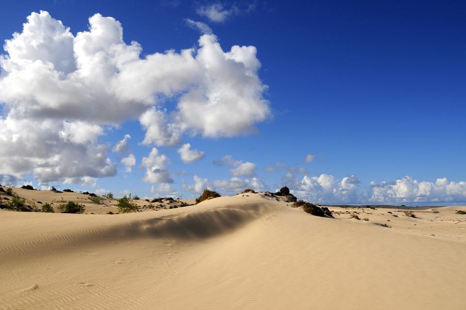 Fuerteventura , Les dunes de Corralejo , Le désert , Espagne