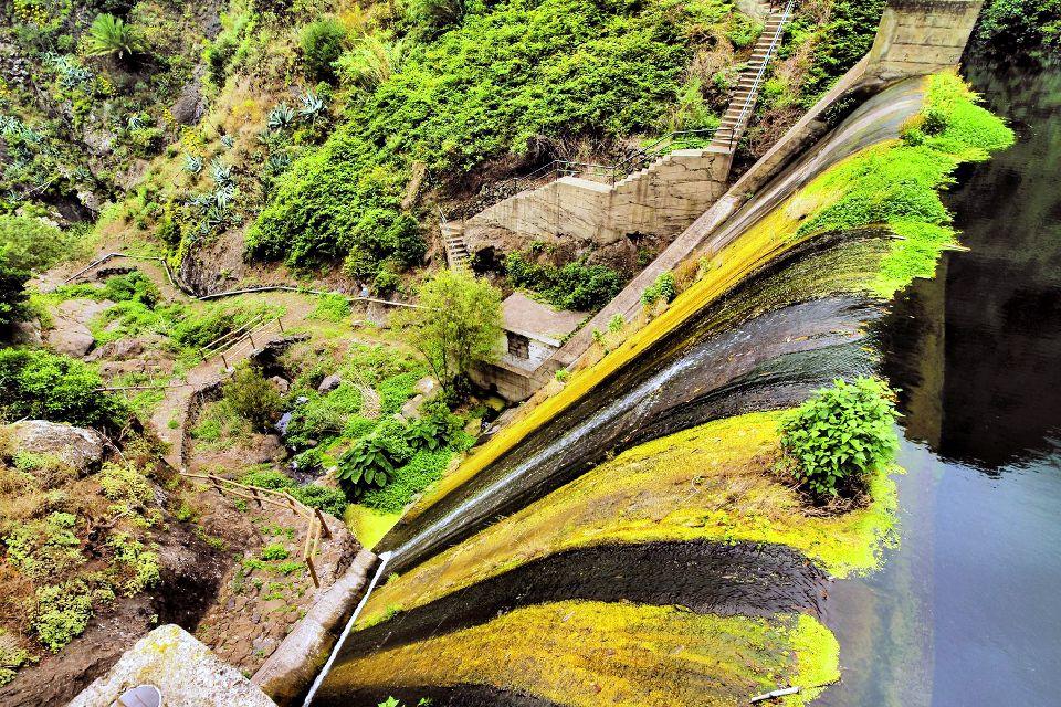La Gomera , Le parc national de Garajonay , Vestige d'une forêt préhistorique , Espagne