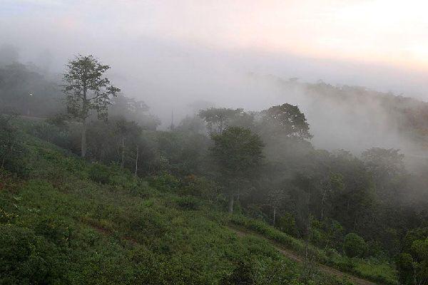 Die Ring Road , Kamerun