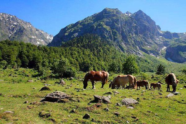 Val d'Aràn , El Valle de Arán , España