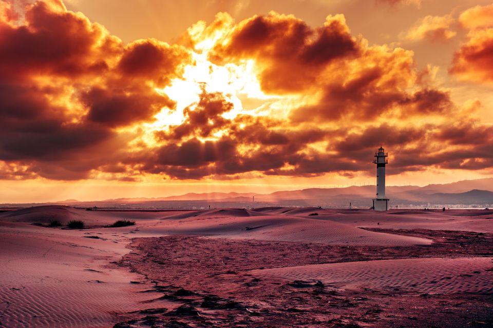 Delta de l'Èbre , Rizière au coucher du soleil , Espagne