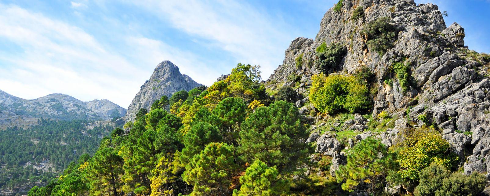 Sierra de Grazalema, Les paysages, Huelva, Andalousie