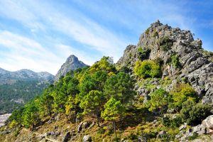 Sierra de Grazalema , Espagne
