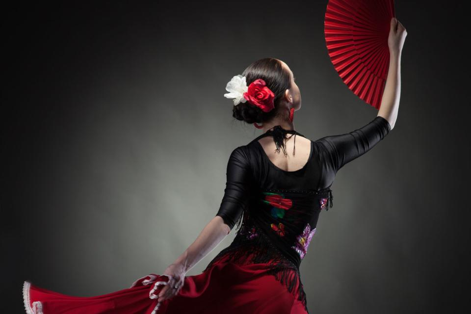 Le flamenco , Danseuse de flamenco , Espagne