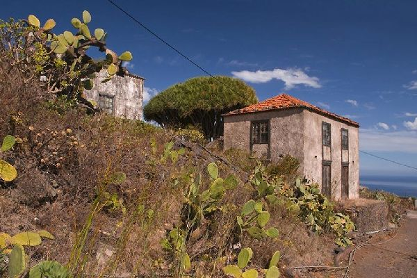 La Palma , Le paysage protégé d'El Tablado , Espagne