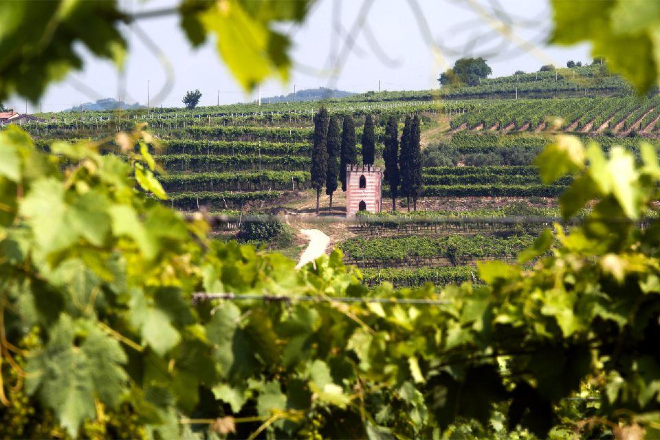 La campagne et les villas , La campagne vénitienne , Italie