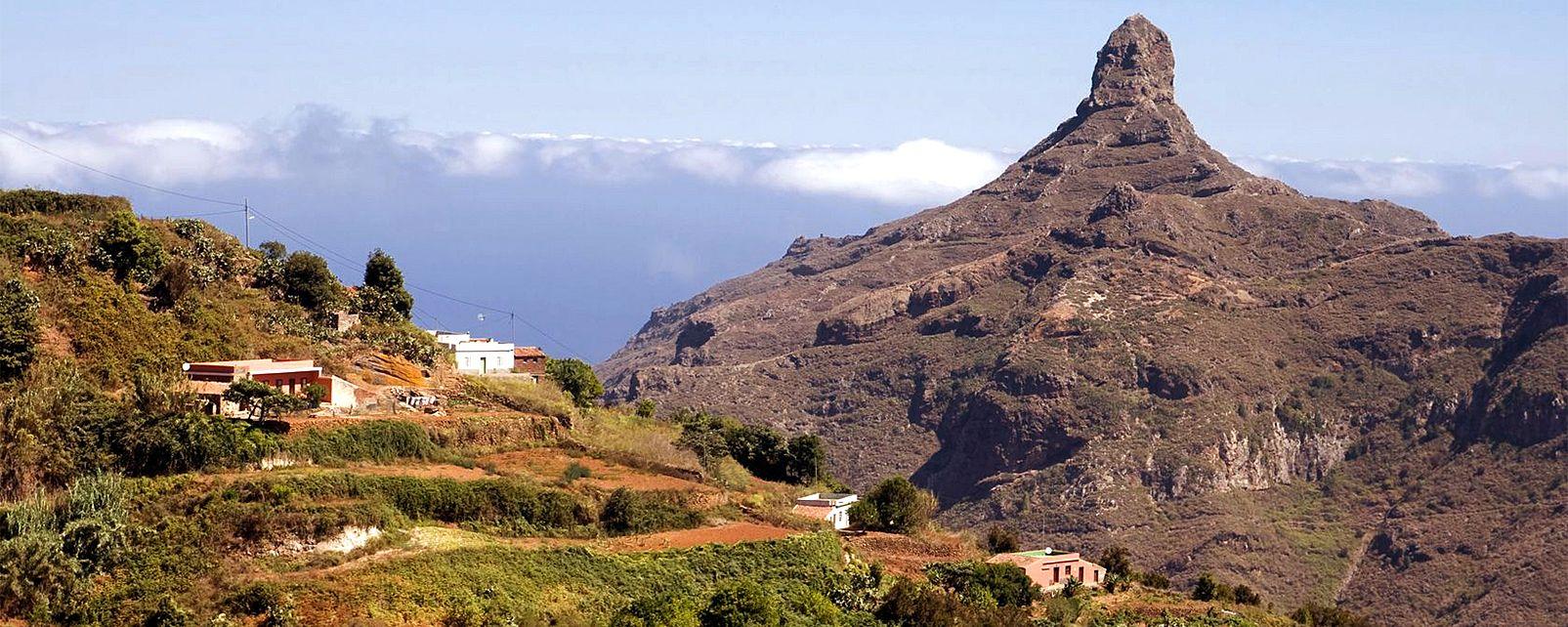 La faune et la flore, Cruz de Taborno, taborno, ténérife, canaries, île, mer, espagne, parc, anaga