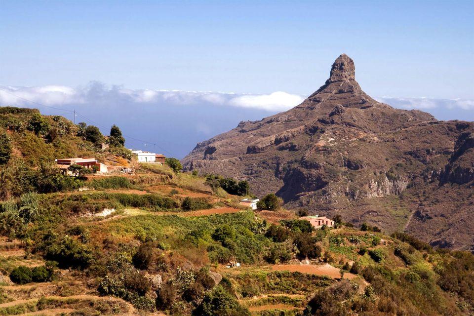 Der Naturpark Anaga, Teneriffa - Der Landpark von Anaga, Die Fauna und Flora, Kanarische Inseln