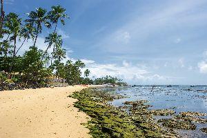 La ligne verte , La côte des cocotiers , Brésil