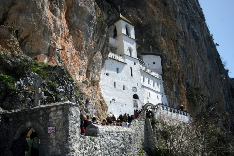 Forex club montenegro