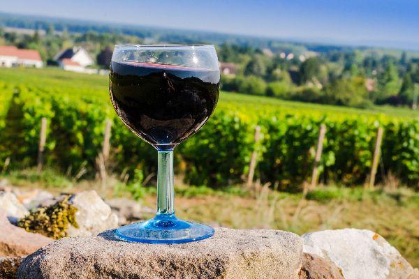 Les vins , France