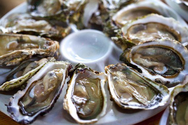 Les huîtres du Bassin d'Arcachon , France