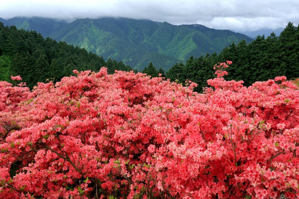 Geumgansan , the Diamond Mountains , Geumgangsan, the diamond mountains , South Korea