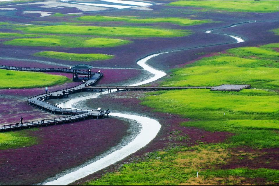 L'isola di Jeungdo , Corea del Sud