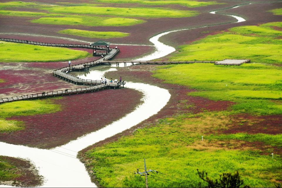 Jeungdo Island Sinan South Korea